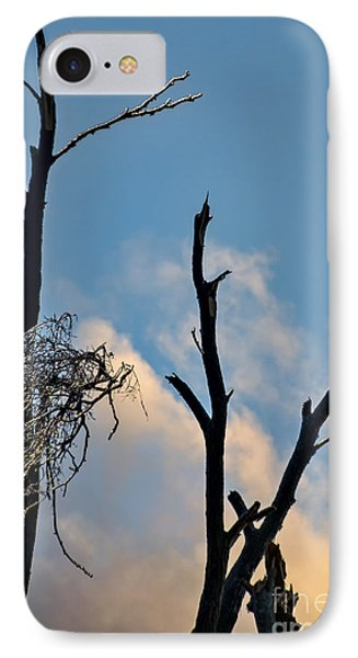 Victims Of The Ice Storm IPhone Case by Gerda Grice