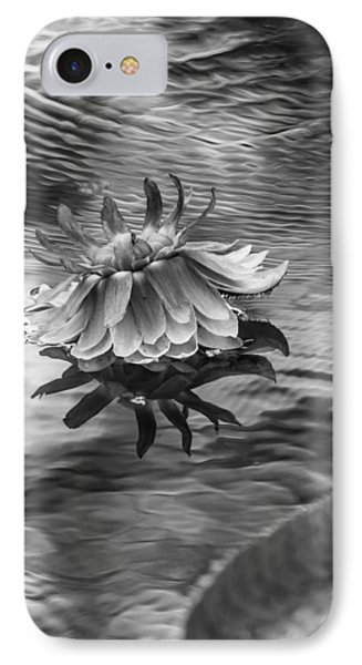 Victoria Regia Blossom. Royal Botanical Garden In Mauritius. Black And White IPhone Case by Jenny Rainbow