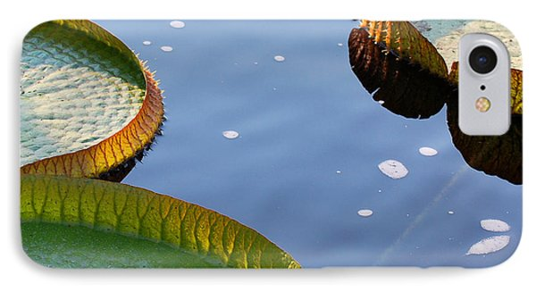 Victoria Waterlilies IPhone Case by Nancy Mueller