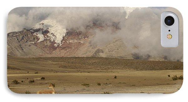 Vicuna At Mt Chimborazo Andes Mts IPhone Case