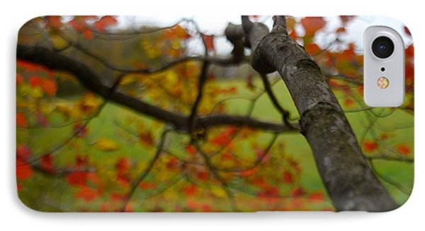 View From A Tree IPhone Case by Alex King