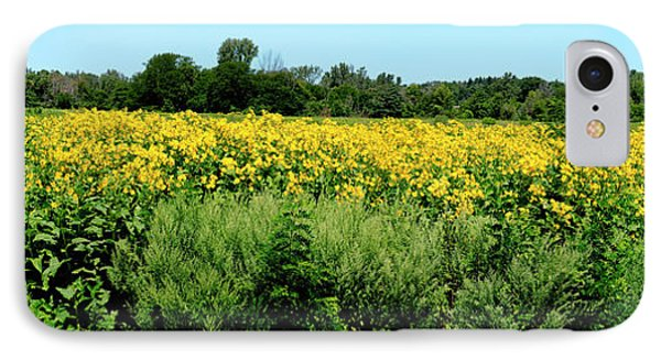View Of A Field, Abshire Prairie IPhone Case