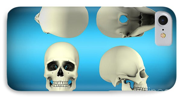 View Of Human Skull From Different Phone Case by Stocktrek Images