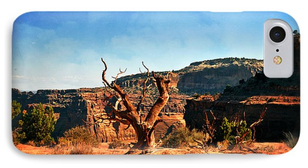 View Of The Canyon Phone Case by Marty Koch