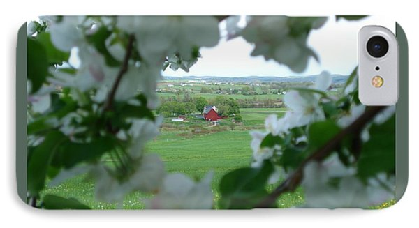 View Through Apple Blossoms IPhone Case by Patricia Overmoyer