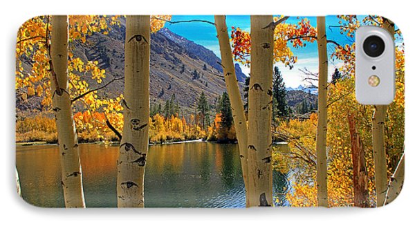View Through The Aspens IPhone Case by Donna Kennedy