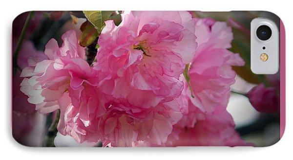 Vignette Cherry Blossom IPhone Case by Gena Weiser