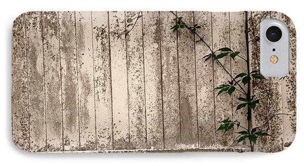 Vine And Fence IPhone Case by Amanda Vouglas