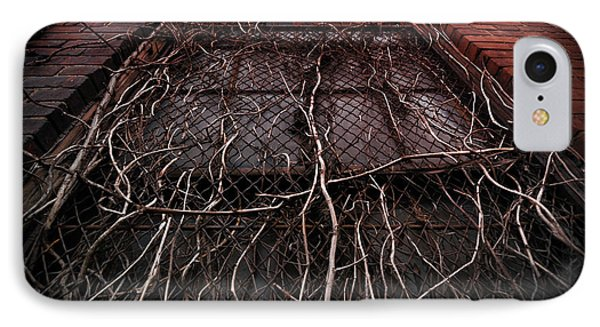 Vine Of Decay 1 IPhone Case by Amy Cicconi