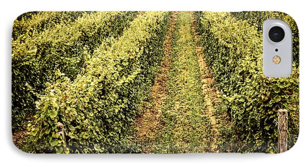 Vines Growing In Vineyard Phone Case by Elena Elisseeva