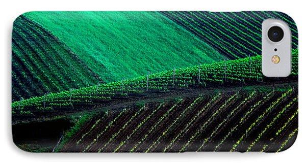 Vineyard 05 IPhone Case by Edgar Laureano