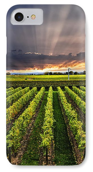 Vineyard At Sunset IPhone 7 Case