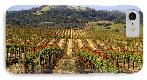 Vineyard, Geyserville, California, Usa IPhone Case by Panoramic Images