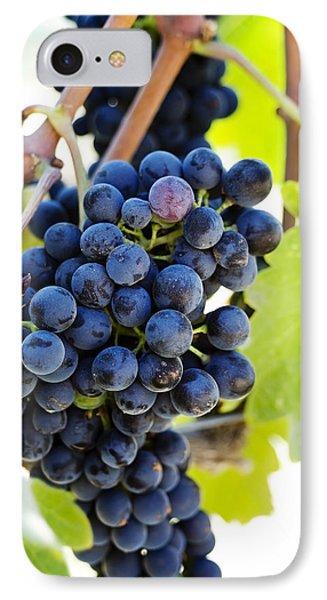 Vineyard Grapes Phone Case by Charmian Vistaunet