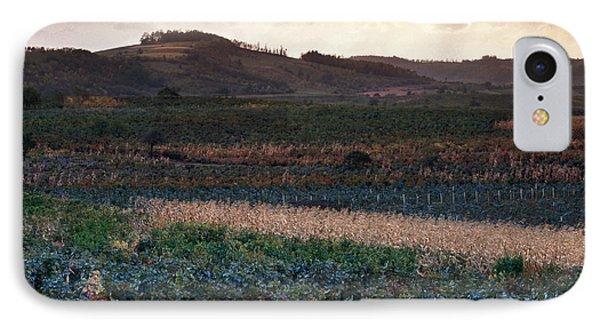 Vineyard In Krushevac. Serbia Phone Case by Juan Carlos Ferro Duque