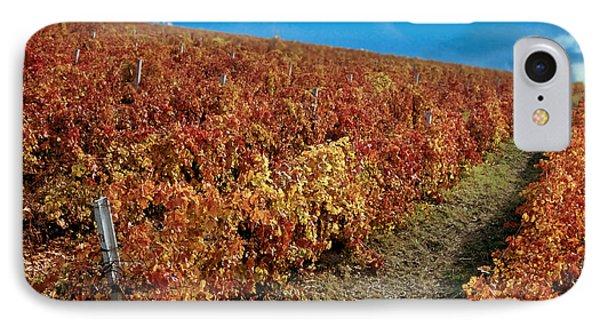 Vineyard In Negotin. Serbia Phone Case by Juan Carlos Ferro Duque