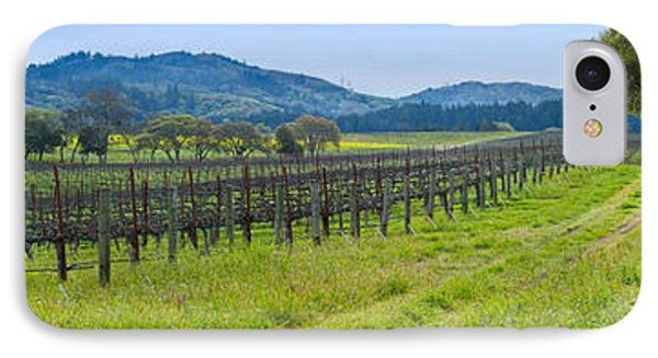 Vineyard In Sonoma Valley, California IPhone Case by Panoramic Images