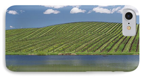Vineyard Near A Lake, Napa County IPhone Case by Panoramic Images
