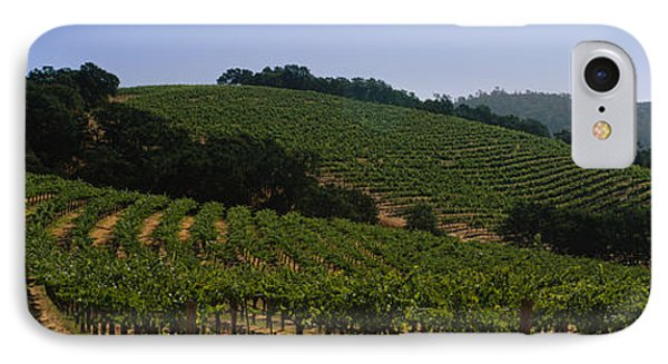 Vineyard On A Landscape, Napa Valley IPhone Case by Panoramic Images