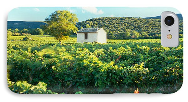 Vineyard Provence France IPhone Case by Panoramic Images