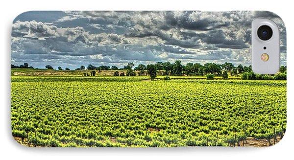 Vineyards Almost Ripe IPhone Case