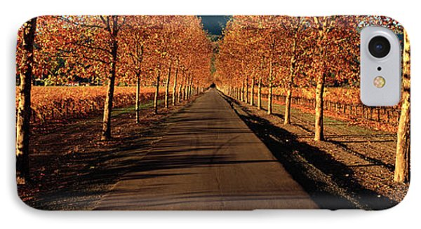 Vineyards Along A Road, Beaulieu IPhone Case by Panoramic Images