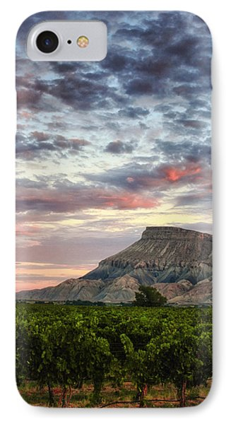 Vineyards And Mt Garfield IPhone Case