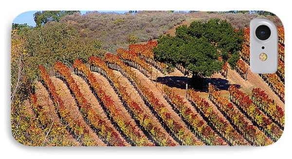 Vineyards IPhone Case