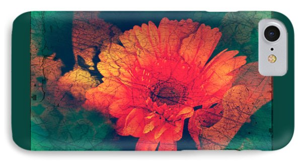 Vintage Aster IPhone Case by Sherry Flaker
