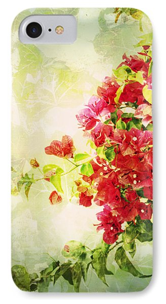 Vintage Bougainvillea San Diego California IPhone Case by Marianne Campolongo