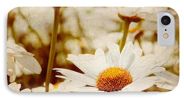 Vintage Daisy IPhone Case by Beverly Stapleton