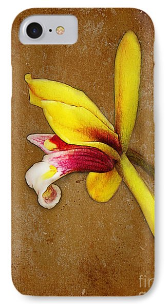 Vintage Orchid IPhone Case by Judi Bagwell