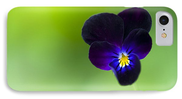 Viola Cornuta 'bowles Black' Phone Case by Tim Gainey
