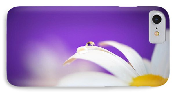 Violet Daisy Dreams IPhone Case by Lisa Knechtel