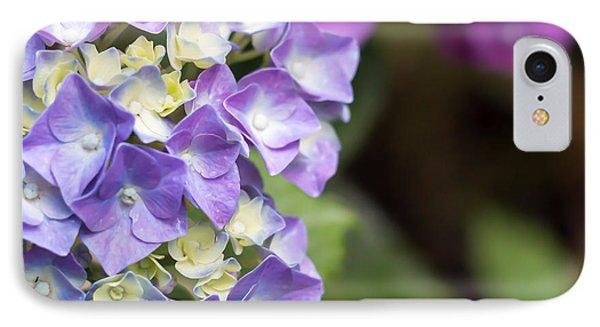 Violet Flower IPhone Case by Salvatore Pappalardo