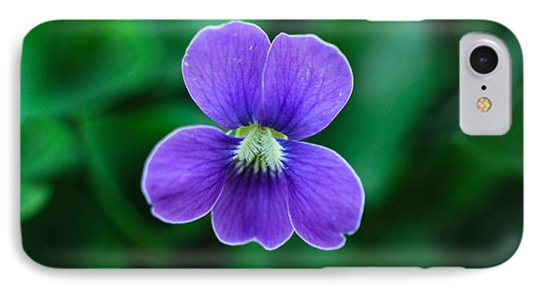 Violet Splendor IPhone Case by Julie Andel