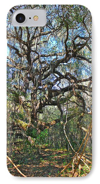 IPhone Case featuring the photograph Virgin Forest by Cyril Maza