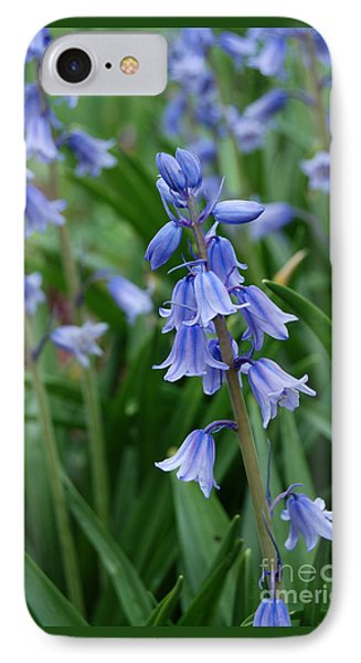 IPhone Case featuring the photograph Virginia Blue Bells  by Eva Kaufman