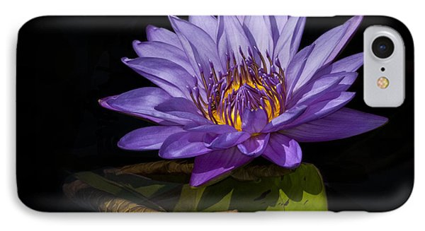 Visitor To The Water Lily IPhone Case