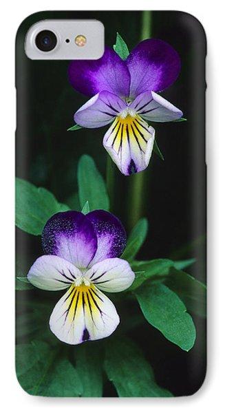 Vivacious Viola  IPhone Case