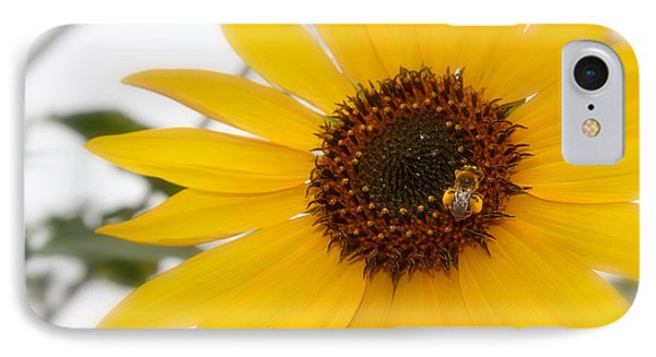 IPhone Case featuring the photograph Vivid Sunflower With Bee Fine Art Nature Photography  by Jerry Cowart