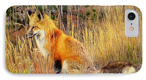 IPhone Case featuring the photograph Vixen by Karen Shackles