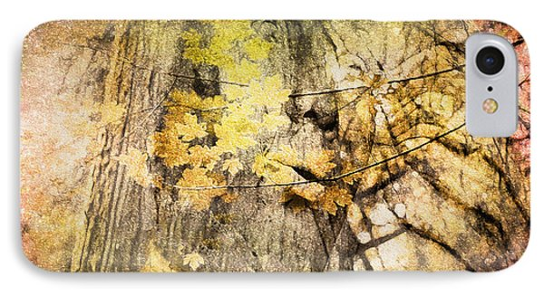IPhone Case featuring the photograph Her Forest by Kathy Bassett