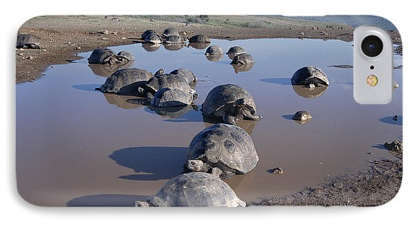 Volcan Alcedo Giant Tortoise Wallowing Phone Case by Tui De Roy
