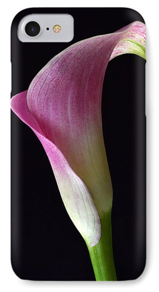 Volute Calla IPhone Case by Terence Davis
