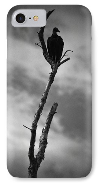 Vulture Silhouette IPhone Case by Bradley R Youngberg