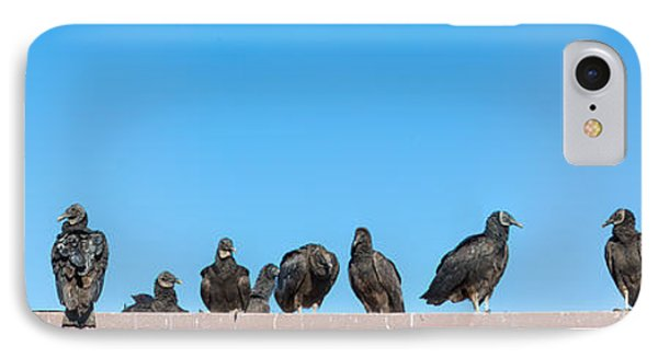 Anhinga iPhone 7 Case - Vultures On Anhinga Trail, Everglades by Panoramic Images