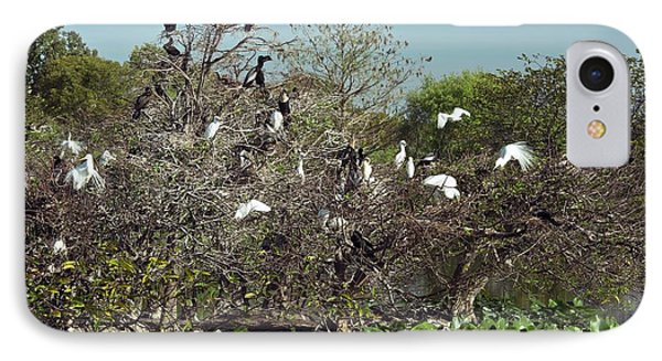 Wading Birds Roosting In A Tree IPhone 7 Case by Bob Gibbons