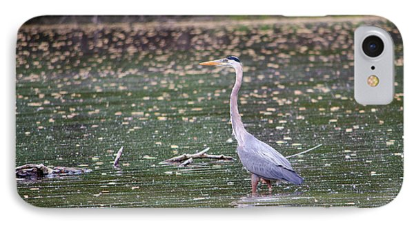 IPhone Case featuring the photograph Wading Crane by Susan  McMenamin