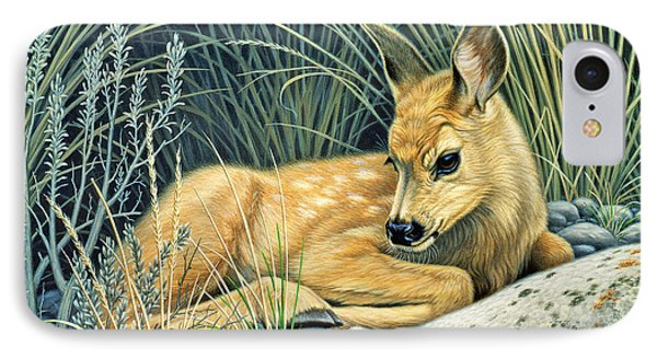 Waiting For Mom-mule Deer Fawn IPhone 7 Case by Paul Krapf
